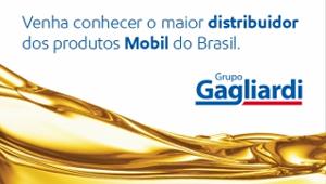 http://www.grupogagliardi.com/